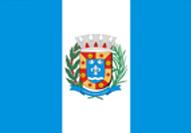bandeira_salto